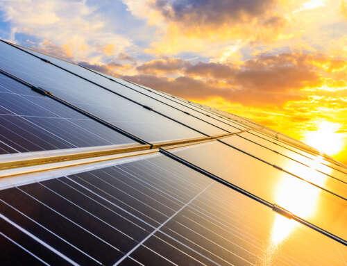 Solar Orphans: What to Do If Solar Retailer Has Shut Down